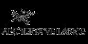 Logo_veilance